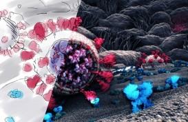 Waspada, Mamalia di Sekitar Rumah Bisa Jadi Inkubator Virus Corona Baru