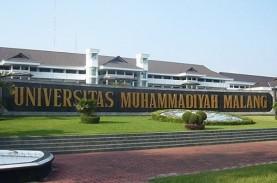 Universitas Muhammadiyah Malang Lebih Baik dari Kampus…
