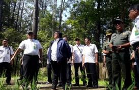 Perhutanan Sosial: Ditarget 1 Juta Ha, Riau Baru Realisasikan 124.953,82 Ha dalam 2 Tahun