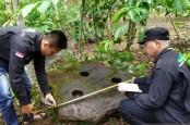Lumpang Batu dari Masa Megalitikum di Kebun Kopi Diperiksa, ini Hasilnya