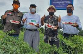 PT CPI Luncurkan Program untuk Riau Sehat dan Sejahtera