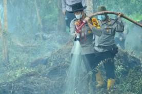Muncul Titik Api, Enam Hektare Lahan di Inhil, Riau…