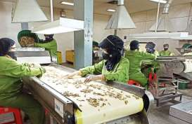 Sido Muncul (SIDO) Bidik Kontribusi Ekspor hingga 5 Persen Terhadap Pendapatan 2021