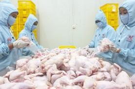 Rampungkan Rumah Potong Ayam, Widodo Makmur Unggas…