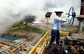 PENGEMBANGAN ENERGI TERBARUKAN : Mantapkan Holding Panas Bumi