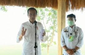 Jokowi Minta Menteri PUPR Bangun Bendungan di Area Food Estate NTT