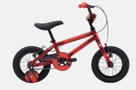 Harga Sepeda Anak Polygon Seri Crosser dan Bad Badtzmaru,…