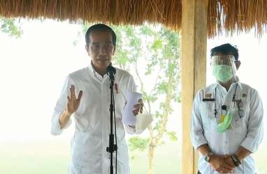 3 Kecacatan dari Kerumunan Massa saat Jokowi ke Maumere NTT
