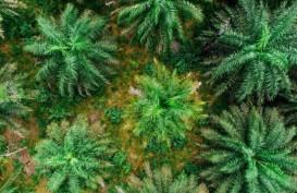 Sinar Mas Agribusiness Gandeng Satelligence Kurangi Deforestasi