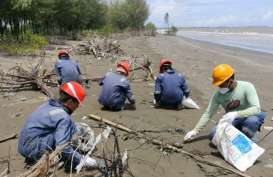 Perairan Karawang Kembali Tercemar Minyak Mentah, 120 Petugas Diturunkan
