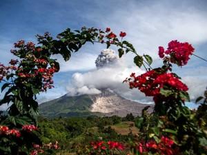 Gunung Sinabung Semburkan Material Vulkanik Setinggi 3.960 Meter Di Atas Permukaan Laut