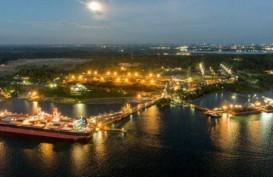 Konglomerat Low Tuck Kwong Borong Saham BYAN Rp15,5 Miliar