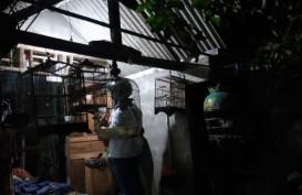 Lagi, Tim Densus 88 Tangkap Seorang Terduga Teroris di Surabaya