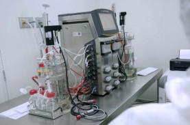 Kecolongan Impor Rapid Test, RI Pacu Inovasi Alkes…