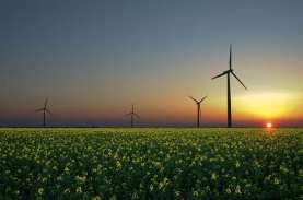 Perdagangan Kredit Karbon dan Ekonomi Hijau RI