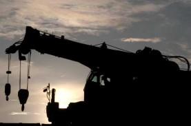 OPINI  : LPI dan Pemulihan Ekonomi 2021