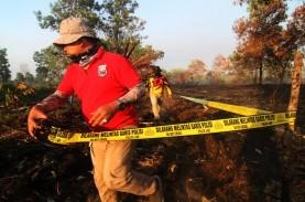 Kebakaran di Pontianak Landa 40 Hektare Lahan Gambut