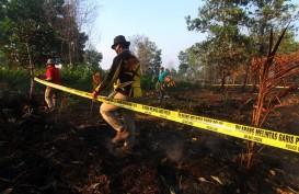 Antisipasi Kabut Asap, Masyarakat Diminta Membatasi Aktivitas