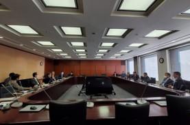 Dewas Ungkap Latar belakang Dibentuknya SWF, Dana Kurang hingga Sulit Mencari Investor