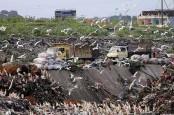 TPA Suwung Makin Penuh, Denpasar Bakal Kelola Sampah di Desa dan Kelurahan