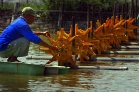 Kebutuhan Kincir Air Tambak Udang Capai 1,5 Juta Unit