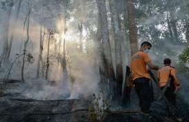 Penegakan Hukum, Polda Riau Sudah Menahan 8 Pelaku Pembakar Lahan