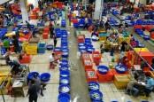 Harga Ikan Naik, Perindo: Jangan Panic Buying, Mei–Juni Bakal Normal