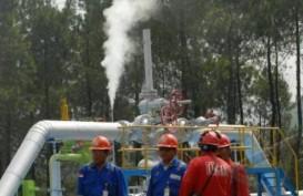 Pertamina Geothermal Energy Kelola 15 Wilayah Kerja Panas Bumi