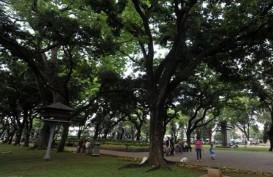 Hari Ini, 3 Hutan Kota dan 24 Taman di Jakarta Dibuka Kembali