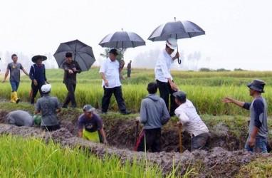 Sebanyak 144 Wilayah Jadi Prioritas Program Padat Karya 2022