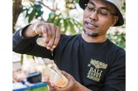 Ubah Strategi Bisnis,Produsen Madu di Bali Raup Omzet…