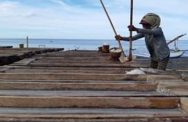 Petani Garam di Pantai Dadapayam dan Sepanjang Berhenti Beroperasi