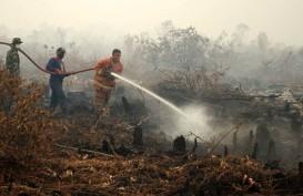9 Pelaku Karhutla di Riau Berhasil Ditangkap, Motifnya Faktor Ekonomi