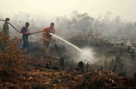 9 Pelaku Karhutla di Riau Berhasil Ditangkap, Motifnya…