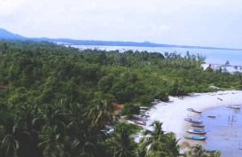 Pacu Kawasan Industri Tanjung Ular, Babel Revisi IPPKH