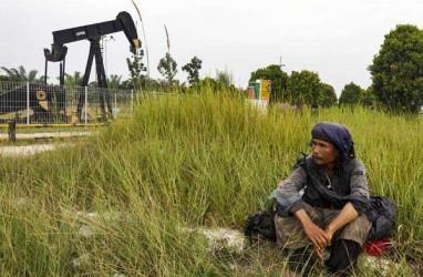 Historia Bisnis : Berebut Kuasa Sumur Penuh Minyak di Riau