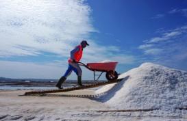 Impor Garam, Industri Mamin Bakal Serap Garam Rakyat 131.000 Ton