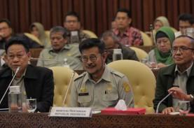 DPR Tanya Soal Impor Beras, Mentan: Saya Tak Ada Legal…