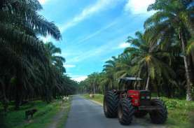 CALON EMITEN : TAP Agri Bakal Go Public