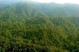 Aturan Pengadaan Tanah untuk Kepentingan Umum Terus…