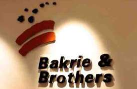 Bakrie Brothers (BNBR) Private Placement 297,8 Juta Saham