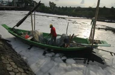 Beberapa Hari Terakhir Sungai Tambak Wedi di Surabaya Berbusa, Ada Apa?