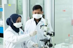 INDUSTRI FARMASI : Phapros Dukung Fitofarmaka
