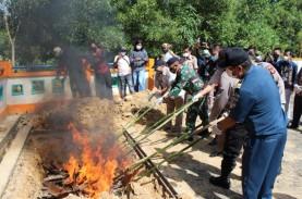 Praktik Pengeboman Ikan Marak di Morowali, KKP Lakukan…