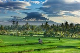Bali Dibuka Agustus 2021, Pelaku Pariwisata Bingung…