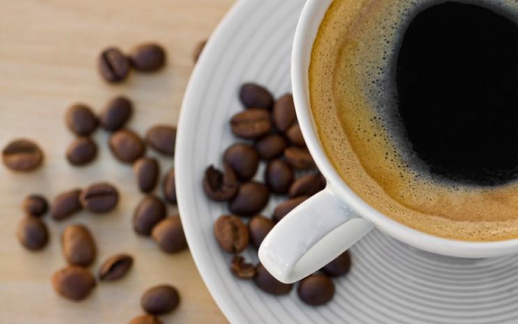 Kopi. Coffee Drip bisa jadi solusi untuk ngopi di rumah buat kamu yang mau merasakan sensasi menyeduh kopi.  - Arah Kopi