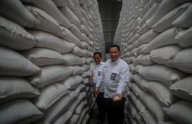 Tak Perlu Impor, Buwas Pastikan Stok Beras Aman Hingga Mei 2021