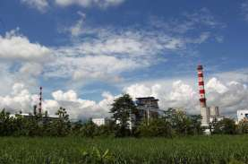 PT RUM, Pabrik Serat Rayon Milik Keluarga Lukminto…
