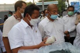 6.304 Butir Mutiara Lombok Diekspor ke Tiongkok