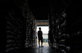 Perpadi: MoU Impor Beras Indonesia dengan Thailand Tak Mengikat